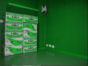 grønn effekt